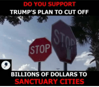 Memes, 🤖, and Yes: DO YOU SUPPORT  TRUMP'S PLAN TO CUT OFF  STOP  BILLIONS OF DOLLARS TO  SANCTUARY CITIES YES!