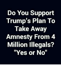 "Memes, 🤖, and Yes: Do You Support  Trump's Plan To  Take Away  Amnesty From 4  Million Illegals?  ""Yes or No"""