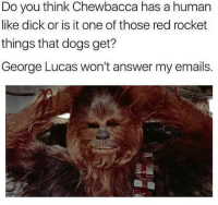 A question that needs an answer...: Do you think Chewbacca has a human  like dick or is it one of those red rocket  things that dogs get?  George Lucas won't answer my emails. A question that needs an answer...