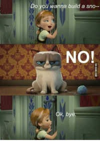 Grumpy Cat, Build A, and Building A: Do you wanna build a sno--  NO  Ok, bye No.