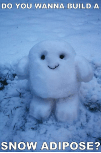 Memes, Snow, and 🤖: DO YOU WANNA BUILD A  SNOW ADIPOSE?