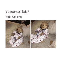 Memes, 🤖, and Idiosyncratic: do you want kids?'  yes, just one' dog babies are 10000x better than baby babies @idiosyncrat