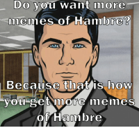 When I saw the Cincinnati Zoo asking for no more Hambre memes...: Do you want more  memes of Hambre  Because that is how  -you get more memes  ot Ham bre When I saw the Cincinnati Zoo asking for no more Hambre memes...