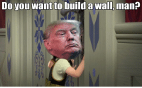 Do you want to build a Wall, man?