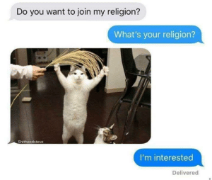 Shitheadsteve: Do you want to join my religion?  What's your religion?  Shitheadsteve  I'm interested  Delivered