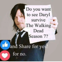 Memes, The Walking Dead, and Walking Dead: Do you want  to see Daryl  survive  The Walking  Dead  Season 7?  I and Share for ye  for no