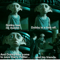 Hello potterheads! 》I love Dobby, he's so lovely and brave. Dobby is one of my favourite character❤ qotd Which would go to Hogwarts? aotd ofc train!: Dobby has  Dobby is a free elf.  no master.  wwweasleystwins  And Dobby has come  to save Harry Potter...  and his friends. Hello potterheads! 》I love Dobby, he's so lovely and brave. Dobby is one of my favourite character❤ qotd Which would go to Hogwarts? aotd ofc train!