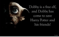 <3   Lady Snape: Dobby is a free elf,  and Dobby has  come to save  Harry Potter and  his friends <3   Lady Snape