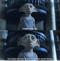 [ DeathlyHallowsPart1 – 2010] — Q: What time is it where you are?: Dobby is a free elf.  POTTERSCENES  And Dobby has come to save Harry Potter and his friends. [ DeathlyHallowsPart1 – 2010] — Q: What time is it where you are?
