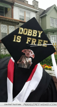 """College, Memes, and Free: DOBBY  IS FREE  MUGGLENET MEMES.COM  Like this? You'll hate <p>I graduated college on Thursday after 5 years. <a href=""""http://ift.tt/1lTRGej"""">http://ift.tt/1lTRGej</a></p>"""