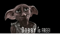 On this day in 1993, Dobby was freed from slavery with Harry's sock: DOBBY S FREE On this day in 1993, Dobby was freed from slavery with Harry's sock