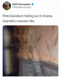 Hang in there Pete: DOBS  Matt Fernandez  @FattMernandez  MYIIRRORT  Pete Davidson hiding out in Ariana  Grande's mansion like Hang in there Pete