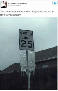 Memes, Limited, and 🤖: Doc Hohoho-ckenbush  DocHackenbush  The bittersweet moment when a signpost dies and its  spirit leaves its body.  SPEED  LIMIT  25