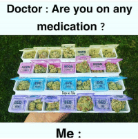 Doctor, Dope, and Memes: Doctor: Are you on any  medication  MORN  THU  NOON  MON  Dope AS  BED  SUN  Me