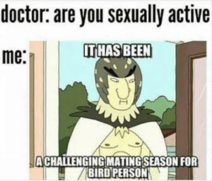 meirl: doctor: are you sexually active  IT HAS BEEN  me:  ACHALLENGING MATING SEASON FOR  BIRD PERSON meirl