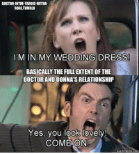 Doctor, Love, and Memes: DOCTOR-INTHE TARDIS WITHA.  ROSETUMBLR  IDM IN MY WEDDING DRESS  BASICALLY THE FULLETENT OFTHE  DOCTORANDIDONNATSRELATIONSHIP  Yes, you look lovely!  COME ON!  quickmeme