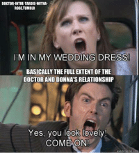 Dress: DOCTOR-INTHE TARDISWITHA  ROSETUMBLR  IM IN MY WEDDING DRESS!  BASICALLY THE FULLEXTENTOFTHE  DOCTORAND DONNA'S RELATIONSHIP  Yes, you look lovely!  COME ON!  quickmenne c