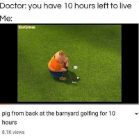 Doctor, Live, and Dank Memes: Doctor: you have 10 hours left to live  Me:  KissCartoon  pig from back at the barnyard golfing for T0  hours  8.1K views