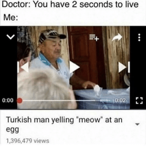 "Live Me: Doctor: You have 2 seconds to live  Me:  0:02 E  0:00  Turkish man yelling ""meow"" at an  egg  1,396,479 views"