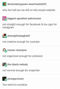 Tumblr, because reasons: doctordairyqueen-deactivated201  why the hell are we still on this stupid website  biggest-gaudiest-patronuses  not straight enough for facebook & too ugly for  instagram  amongthespaghetti  not creative enough for youtube  moose-shampoo  not organized enough for pinterest  the-black-melody  not normal enough for snapchat  strangerclowrn  Too weird to socialize Tumblr, because reasons