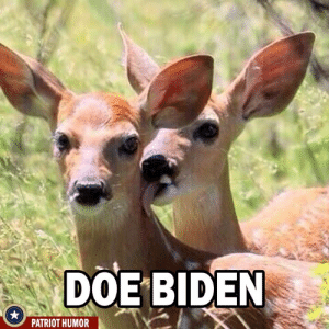 Doe, Memes, and 🤖: DOE BIDEN  PATRIOT HUMOR