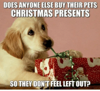 They are family too.: DOES ANYONE ELSE BUY THEIR PETS  CHRISTMAS PRESENTS  SO THEY DON'T FEEL LEFT OUT? They are family too.