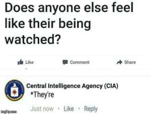 Cia, Intelligence, and Comment: Does anyone else feel  like their being  watched?  Like  Comment  Share  Central Intelligence Agency (CIA)  mJust now Like Reply  ingfipcom