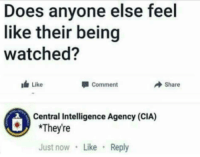 Dank, Memes, and Target: Does anyone else feel  like their being  watched?  Like  Comment  Share  Central Intelligence Agency (CIA)  *They're  Just now Like Reply Can they proofread my papers too? by chudnstuff MORE MEMES