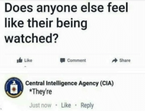 Cia, Intelligence, and Comment: Does anyone else feel  like their being  watched?  Like  Comment  → Share  Central Intelligence Agency (CIA)  *They're  Just now Like Reply