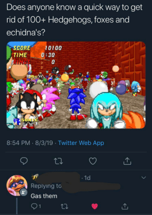 Twitter, Sonic, and Time: Does anyone know a quick way to get  rid of 100+ Hedgehogs, foxes and  echidna's?  SCORE  10100  8:38  TIME  SONIC  8:54 PM 8/3/19 Twitter Web App  1d  Replying to  Gas them  1 meirl