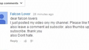 Does anyone know what happened to falcon lover?: Does anyone know what happened to falcon lover?