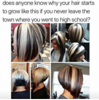 Dank, School, and Hair: does  anyone  know  why  your  hair  starts  to grow like this if you never leave the  town where you went to high school?