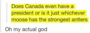 Canadian government: Does Canada even have a  president or is it just whichever  moose has the strongest antlers  Oh my actual god Canadian government