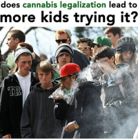 🤔🤔 @dope_weed_photos: does cannabis legalization lead to  more kids trying it?  TR 🤔🤔 @dope_weed_photos