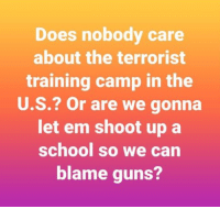 Guns, Memes, and School: Does nobody care  about the terrorist  training camp in the  U.S.? Or are we gonna  let em shoot up a  school so we can  blame guns? ~ Ginger  Rowdy Conservatives