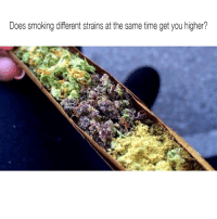 Smoking, Weed, and Marijuana: Does smoking different strains at the same time get you higher? 🤔 @dankcity