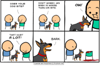 Dog Bite: DOES YOUR  DOG BITE?  DON'T WORRY, HIS  BARK IS WORSE  THAN HIS BITE.  ˋ冫  THAT HURT  A LOT!  8ARK.  Cyanide and Happiness © Explosm.net