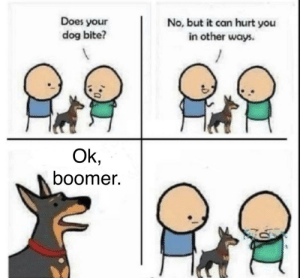 Ok boomer: Does your  dog bite?  No, but it can hurt you  in other ways.  Ok,  boomer. Ok boomer