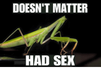 Dank, 🤖, and Doesnt Matter Had Sex: DOESN'T MATTER  HAD SEX