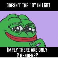 "B: DOESN'T THE ""B"" IN LGBT  IMPLY THERE ARE ONLY  2 GENDERS?"