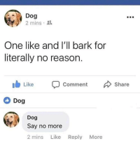 Funny, Girl Memes, and Say No More: Dog  2 mins  One like and I'll bark for  literally no reason.  b Like Comment  Dog  Share  Dog  Say no more  2 mins Like Reply More Dog