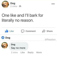 Memes, Say No More, and Reason: Dog  2 mins .  One like and l'll bark for  literally no reason.  Like Comment Share  Dog  @Passion  Dog  Say no more  2 mins Like Reply More done and done