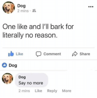 Friends, Memes, and Say No More: Dog  2 mins .  One like and l'll bark for  literally no reason  Like  Comment  Share  Dog  Dog  Say no more  2 mins Like Reply More Dm to exactly 7 friends for a shoutout💥