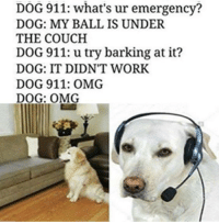 Dank, Omg, and Work: DOG 911: what's ur emergency?  DOG: MY BALL IS UNDER  THE COUCH  DOG 911: u try barking at it?  DOG: IT DIDNT WORK  DOG 911: OMG  DOG: OMG