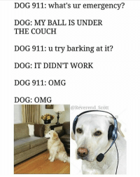 Funny, Omg, and Work: DOG 911: what's ur emergency?  DOG: MY BALL IS UNDER  THE COUCH  DOG 911: u try barking at it?  DOG: IT DIDN'T WORK  DOG 911: OMG  DOG: OMG  @Reverend Scott Hope they got it out. @reverend_scott