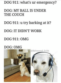 balling: DOG 911: what's ur emergency?  DOG: MY BALL IS UNDER  THE COUCH  DOG 911: u try barking at it?  DOG: IT DIDN'T WORK  DOG 911: OMG  DOG: OMG  @Reverend Scott