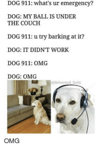 Omg, Work, and Couch: DOG 911: what's ur emergency?  DOG: MY BALL IS UNDER  THE COUCH  DOG 911: u try barking at it?  DOG: IT DIDN'T WORK  DOG 911: OMG  DOG: OMG  @Reverend Scott  OMG
