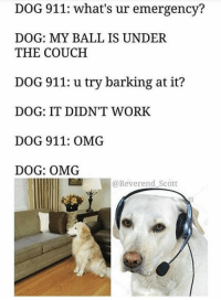 OMG. - General Stinky Balls: DOG 911: what's ur emergency?  DOG: MY BALL IS UNDER  THE COUCH  DOG 911: u try barking at it?  DOG: IT DIDN'T WORK  DOG 911: OMG  DOG: OMG  @Reverend Scott OMG. - General Stinky Balls
