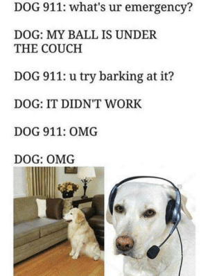 Lol, Omg, and Work: DOG 911: what's ur emergency?  DOG: MY BALL IS UNDER  THE COUCH  DOG 911: u try barking at it?  DOG: IT DIDN'T WORK  DOG 911: OMG  DOG: OMG Lol