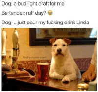 Dank, 🤖, and Dog: Dog: a bud light draft for me  Bartender: ruff day?  Dog: just pour my fucking drink Linda  ThePunny Introvert Srsly